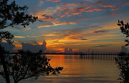 blue trees orange tree water clouds sunrise florida lagoon orangeandblue indianriver martincounty indianriverlagoon pwpartlycloudy sewallspointflorida