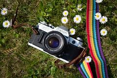 Canon AE-1 Love