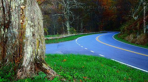road autumn mountains fall skyline turn landscape photography drive virginia nationalpark unitedstates curves roadtrip line va views curve shenandoah rim ontheroad elkton doubleyellow skylinedrive scurve roadtripping