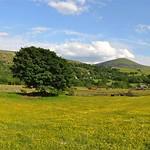 llanbedr North Wales