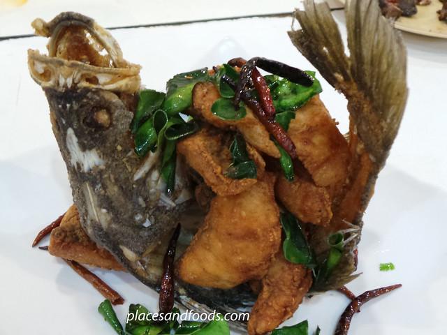 kai tod daycha hatyai fish