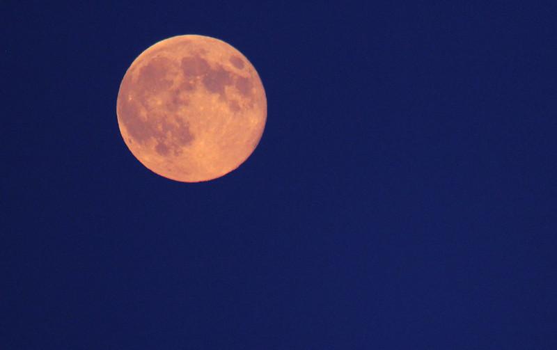 orange moon3