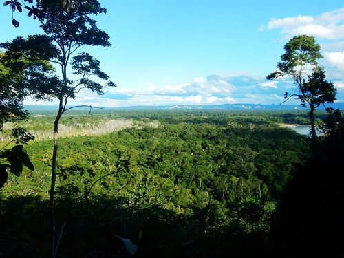 Overlooking Madidi National Park - Amazon forest - Bolivia