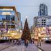 Robson Square Christmas Tree 2016
