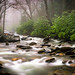Smoky Mountain River by Ken Rowland