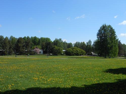 Nurminäkymä, Pohjois-Tapiola Espoo 26.5.2014