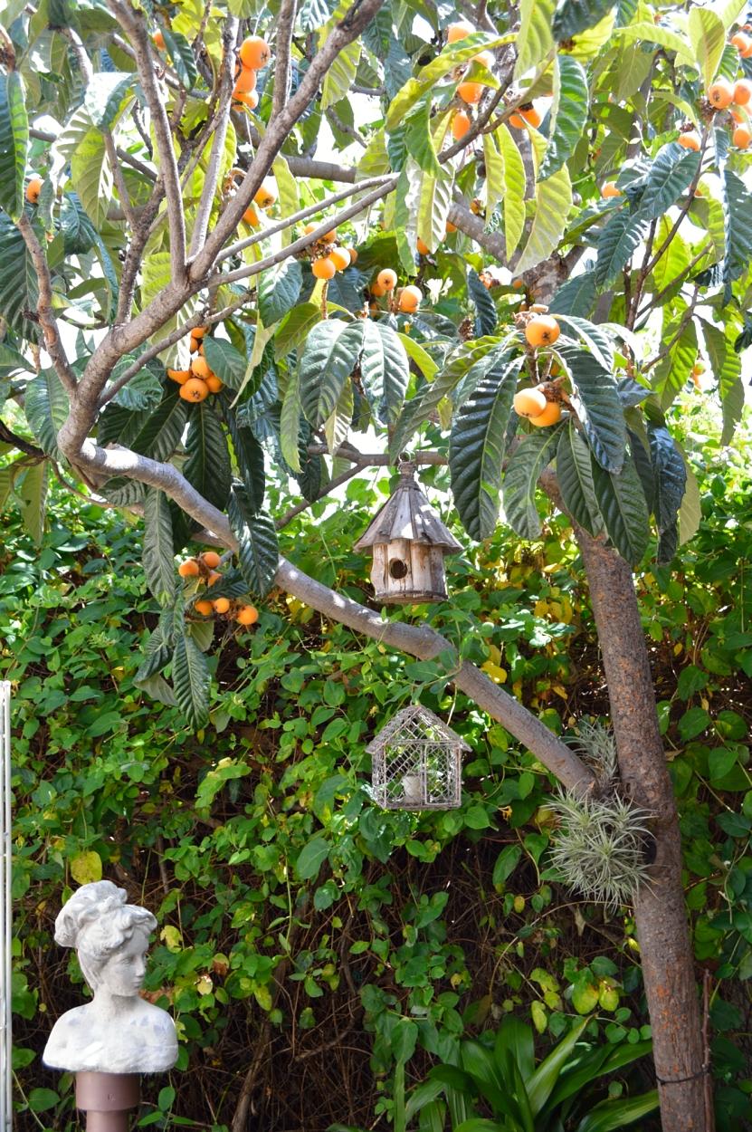 lara-vazquez-madlula-deco-garden-nature-home