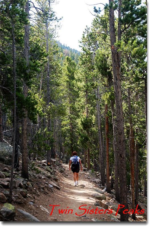 Twin Sisters Peaks 登山步道 1