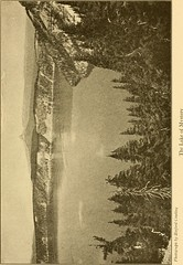 """Image from page 164 of """"The top of the continent; the story of a cheerful journey through our national parks"""" (1917)"""