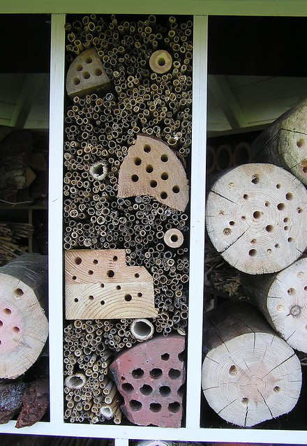 Designed bee room in a bee hotel by me
