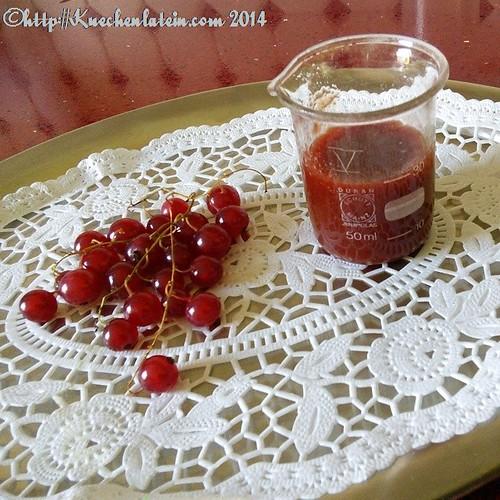 Johannisbeer-Tomaten-Ketchup (2)