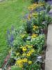 front walk garden