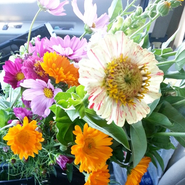 Our #CSA had all you can pick #flowers this week which is like a big fat kiss straight from God to me.