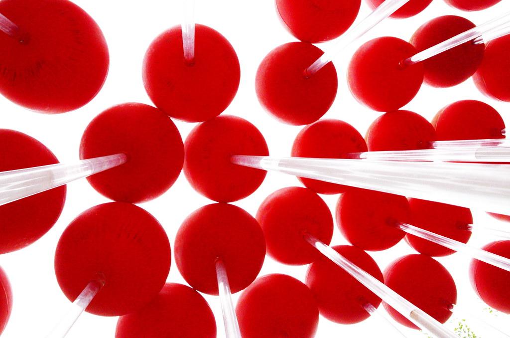 Giant lollipops