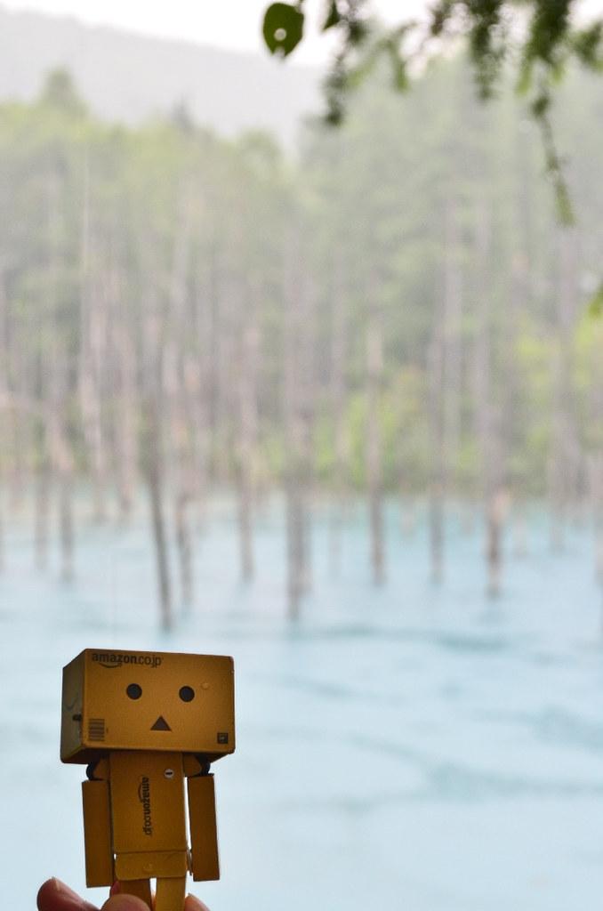 青い池 (8)