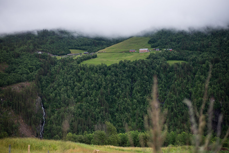 Norge roadtrip-32