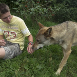 Just with a wolf