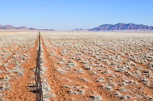 Fences of the desert, Namibia