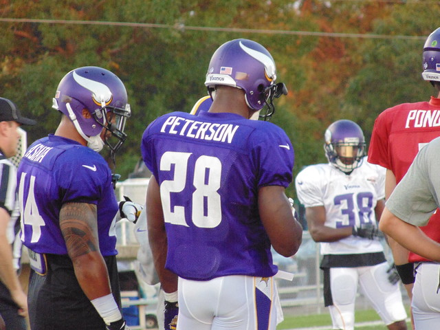 Header of Adrian Peterson