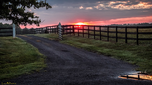 road sky field fog clouds sunrise fence landscape gate pentax driveway gravel mx1