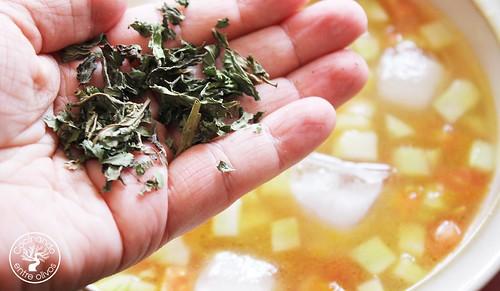Sopa de pepino con hierbabuena (11)