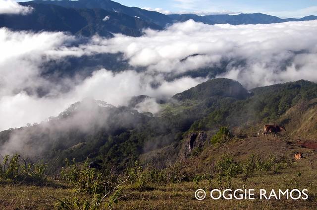 Sagada Marlboro Hills Fog Play II