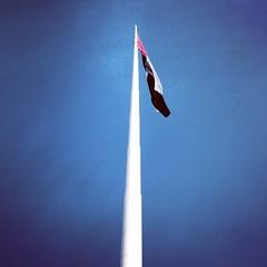 The lagest UAE flag #InAbuDhabi at Breakwater.