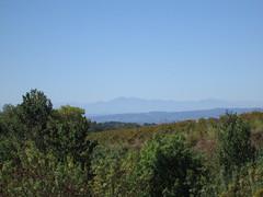 Les Corbières et les Pyrénées depuis le Minervois (Villeneuve-Minervois / France)