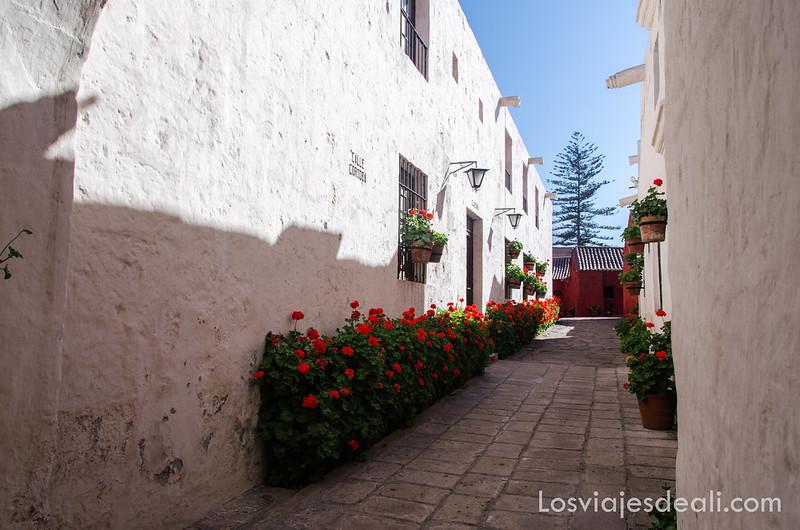 calle córdoba en el convento de santa catalina de Arequipa