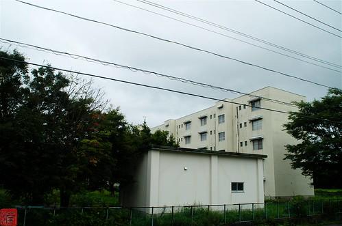 s-IMGP6903