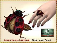Bliensen - Aeropleustic Ladybug - Ring