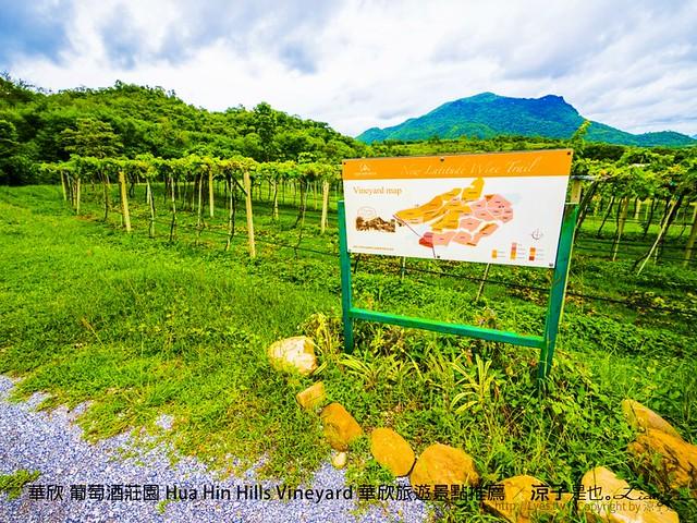 華欣 葡萄酒莊園 Hua Hin Hills Vineyard 華欣旅遊景點推薦 40