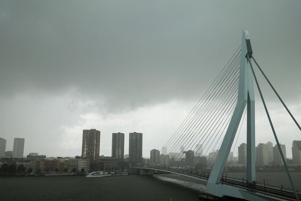 Rotterdam (37 of 44).jpg