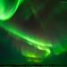 Auroras dwarfing hills [6429]