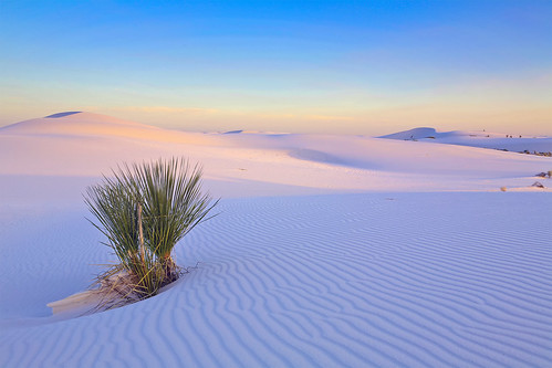 Zen - White Sands National Monument PSIMG_0699-3-notsharp Smart-Object