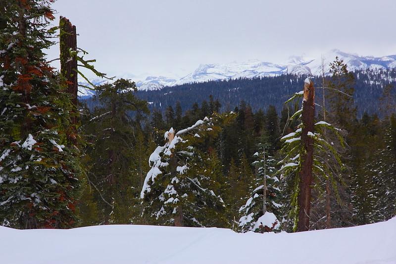 IMG_8408 Ranger-Led Snowshoe Walk
