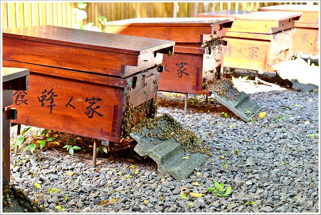 養蜂人家蜂采館007-DSC_6037