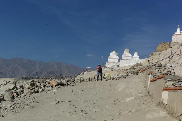 Shey Chorten. Ladakh, 06 Aug 2014. EM1282