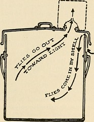 """Image from page 294 of """"Preventive medicine and hygiene"""" (1917)"""