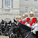 Horse Guards' Race