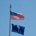 American Flag & South Carolina Flag