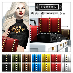 {Indyra} Accessory poster Moda cases fall 2014
