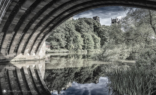 bridge plants clouds canon reflections landscape photography shadows silent durham cathedral eagle north under east sep copyright© silenteaglephotography