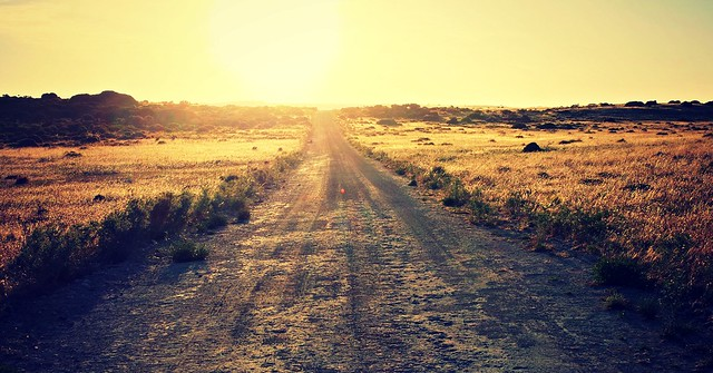 I am the Road