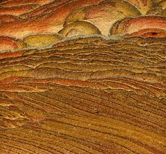 """Liesegang banding"" in quartzose sandstone 1"