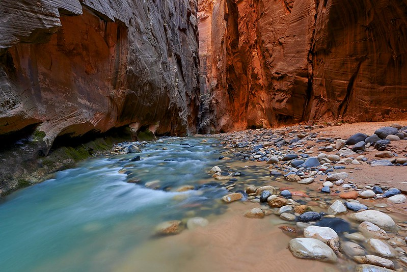 Red Cliffs in the Narrows - Zion National Park