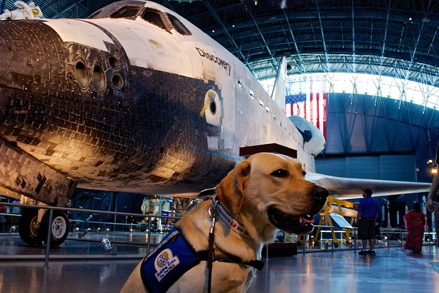 Galahad admires the Space Shuttle Discovery