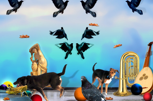 Lila, Tuli, Pigeon, Tuba, Grasshopper, Greek Statue, Theorbo Lute, Colorful Balls, Falling Leaves, August 5, 2014 1-10 bpx