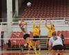 Michigan vs FSU Volleyball