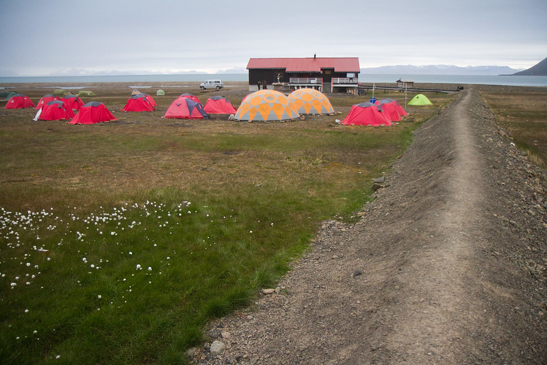 RelaxedPace00521_Svalbard7D3684